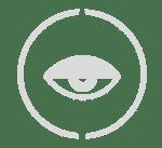 Defense & intelligence icon